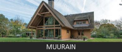 Muurain
